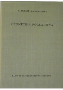 Geometria poglądowa
