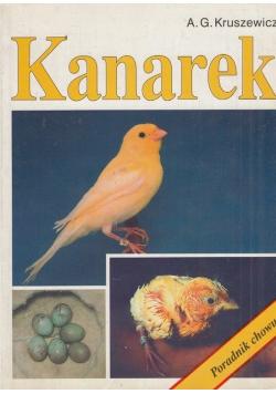 Kanarek