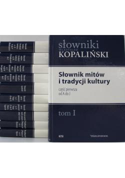 Zestaw słowników 11 tomów