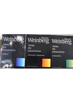 Teoria pól kwantowych 3 tomy