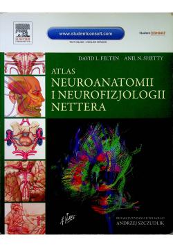 Atlas neuroanatomii i neurofizjologii Nettera w.II
