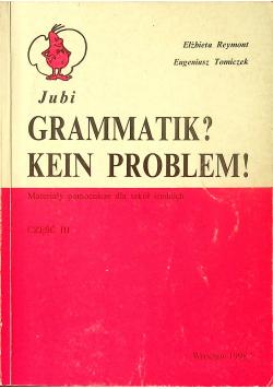 Gramatik Kein Problem Część III
