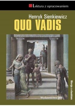 Quo vadis TW IBIS