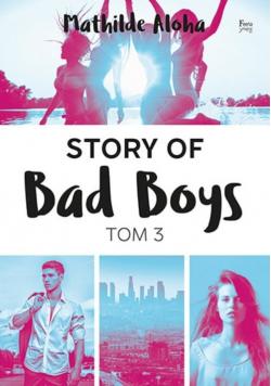 Story of Bad Boys Tom 3