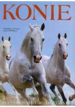 Konie Rasy tradycje obyczaje