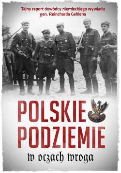 Polskie podziemie w oczach wroga
