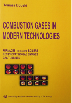 Combustion Gases in Modern Technologies