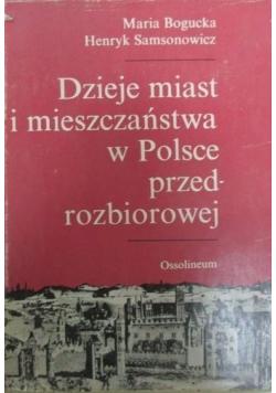 Dzieje miast i mieszczaństwa w Polsce przedrozbiorowej