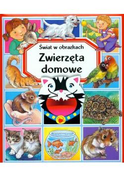 Świat w obrazkach  Zwierzęta domowe