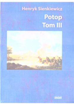 Potop T.3