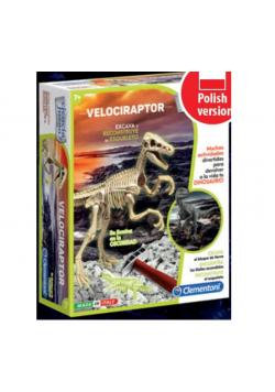 Naukowa zabawa Skamieniałości - Welociraptor