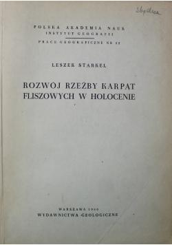 Rozwój rzeźby Karpat fliszowych w holocenie