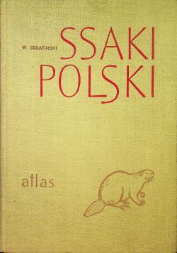 Ssaki Polski atlas