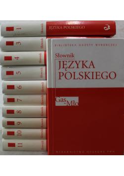 Słownik języka polskiego 11 tomów