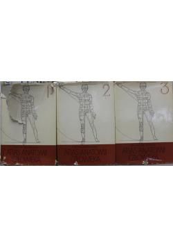 Atlas anatomii człowieka 3 tomy