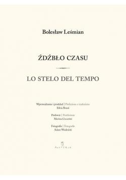 Źdźbło czasu / Lo stelo del tempo