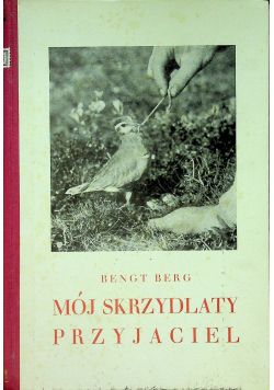Mój Skrzydlaty przyjaciel 1931 r.