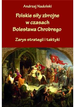 Polskie siły zbrojne w czasach Bolesława Chrobrego