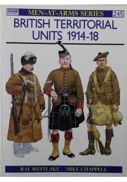 British territorial units 1914 - 18 nr 245