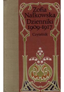 Nałkowska Dzienniki 1909 - 1917