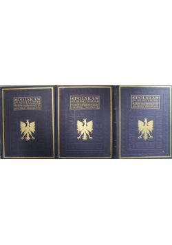 Polska jej dzieje i kultura 3 Tomy 1927r
