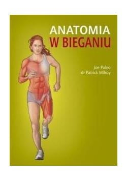 Anatomia w bieganiu
