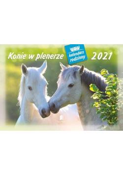 Kalendarz 2021 Rodzinny Konie w plenerze WL10