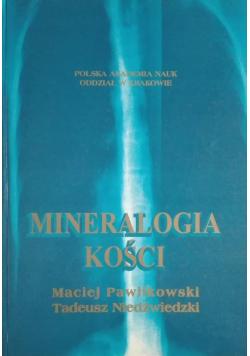 Mineralogia kości