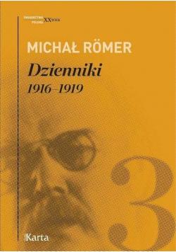 Dzienniki 1916 1919 Tom 3 Michał Romer