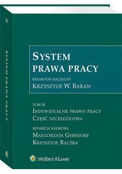 System prawa pracy T.3