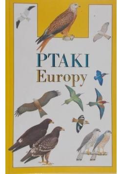 Ptaki Europy