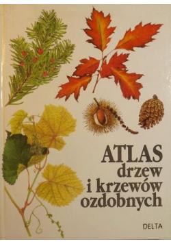 Atlas drzew i krzewów ozdobnych