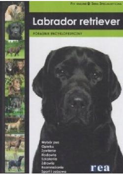 Labrador retriewer Poradnik encyklopedyczny