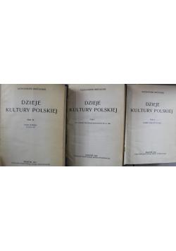 Dzieje Kultury Polskiej 3 tomy 1931 r